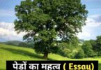 importance of trees in hindi